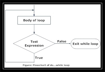 do while loop in C sharp