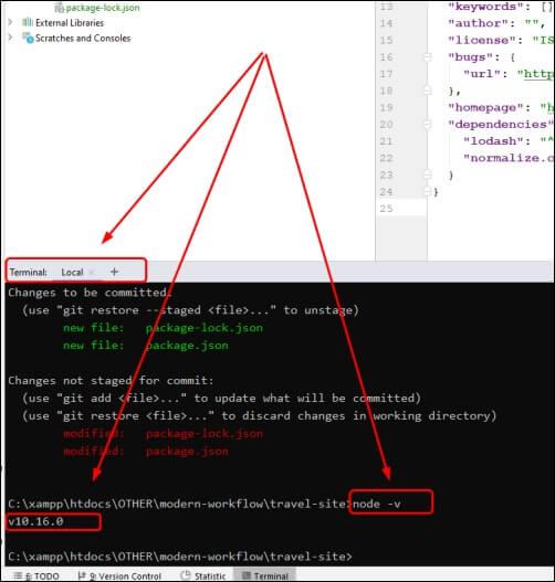 check nodejs version in phpstorm terminal