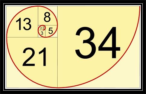 Fibonacci Spiral - Perfect