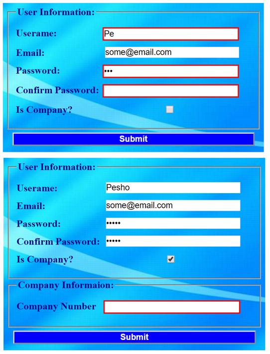 form validation screenshot 1